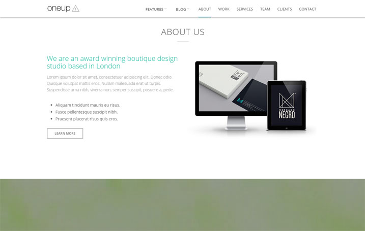 Website Sample 35