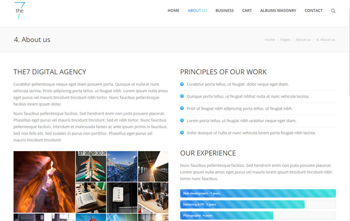 Website Sample 44